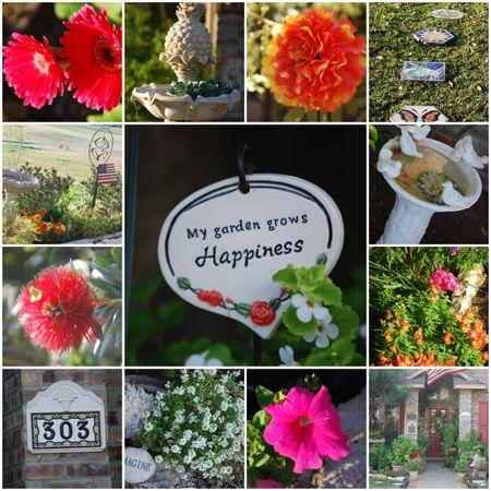 Mimis garden